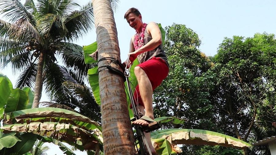 Kera Suraksha Insurance Scheme for Coconut Tree Climbers